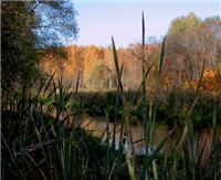 Река Клязьма осенью