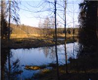 Река Пруженка