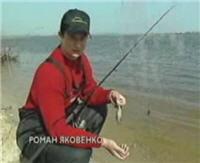 Видео «Ни хвоста, ни чешуи» — Донная ловля