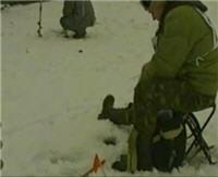 Видео «Ни хвоста, ни чешуи» — Спортивная ловля на мормышку