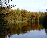 Календарь рыболова —  Октябрь