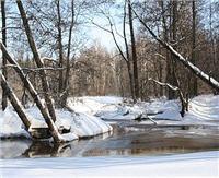 Река Дубенка