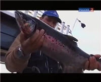 """Видео """"Рыбалка с Радзишевским"""" - На Онежском озере"""