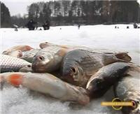 Видео «Рыболовные путешествия» — По последнему льду на Истринском водохранилище