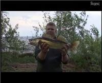 """Видео """"Моя рыбалка"""" - Нижняя Волга (3 выпуск)"""