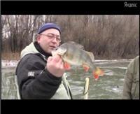Видео «Моя рыбалка» — Нижняя Волга. Астраханская область. Зима 2012. Окунь. Часть 1 (9 выпуск)
