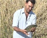 Видео «Моя рыбалка» — Весенняя ловля (29 выпуск)