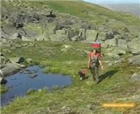 Видео «Рыболовные путешествия» — Дорога. Приполярный Урал