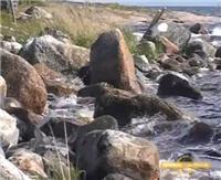 Видео «Рыболовные путешествия» — Кольский полуостров. Часть 1