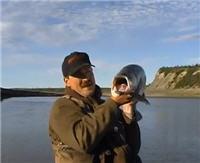 Видео «Серебряный ручей» — Нельма. В поисках незнакомки