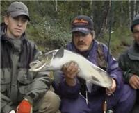 Видео «Серебряный ручей» —  Кольский полуостров - путешествие со спиннингом. Часть 1