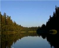 Видео «Серебряный ручей» — Рыбными тропами Беломорья