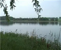 Видео «О рыбалке всерьез» — Рыбалка с поплавочной удочкой