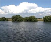 Видео «Моя рыбалка» — Фидер. Москва-река (55 выпуск)