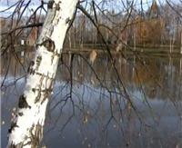 Видео «Моя рыбалка» — Осенняя щука (73 выпуск)