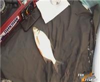 Видео « Рыбачить здорово» — 14000 миллиметров подо льдом