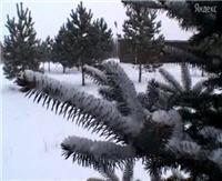 """Видео """"Рыболов-Элит"""" - Удача под Сызранью"""