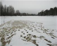Вести с водоемов Подмосковья — Март 2012