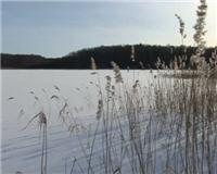 Видео «По клевым местам» —  Рыбалка на Иваньковском водохранилище
