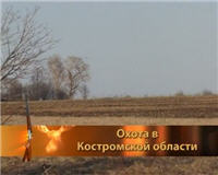 Видео «Главная охота» — Охота в Костромской области