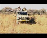 Видео «Главная охота» —  Охота в Африке