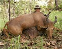 Видео «Главная охота» —  Охотничье хозяйство в Африке