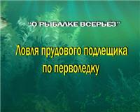 Видео «О рыбалке всерьез» — Ловля прудового подлещика по перволедку