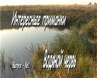 Видео « Интересные приманки» - Водяной червь