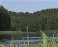 Видео «Siandien Kimba» — Ловля головля на реке Немунас