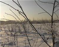 Видео «Рыбалка с Пашком» — Зима. Подводные съемки