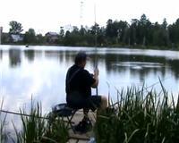 Видео «Рыбацкий дневник» — Ловля карпа — фидер (Выпуск №4)