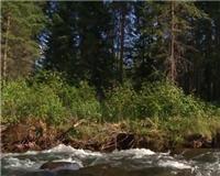 Видео « Рыбалка в Сибири от Владимира Ряпосова» — Тувинская сказка. Часть 3