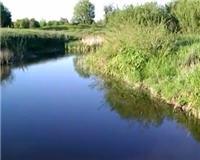 Видео «Клёвая рыбалка» — Первый сазанчик