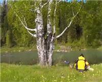 Путешествия с рыбалкой по горным рекам. Тайменная река