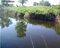 Видео «Клёвая рыбалка» — Первый сазанчик!