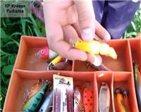 Видео «Клёвая рыбалка» — Новый Свимбейт