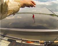 Видео «Клуб рыбаков» — Ловля судака на джиг. Днепр. Часть 2