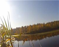 Видео «Балашиха и ближайшее околорубежье» — В лес за щукой