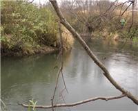 Видео «Рыболовный дневник» — Ловля щуки на спиннинг осенью на малых реках