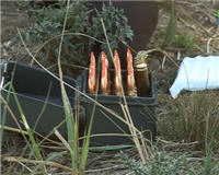Видео «Энциклопедия охотника» — Баллистика. Винтовка 300 Winchester Magnum. Подбираем оптимальную для охоты пулю