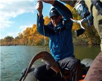 Видео «Рыбий жыр» — Ловля судака джигом на Дону