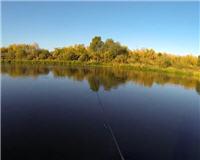 Осенняя рыбалка на реке Дон