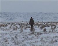 Видео «Наши путешествия» —  Охотничье путешествие в Северный Казахстан. Часть 2