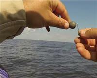 Клуб рыбаков — Монтаж джиговых приманок. Оснащение твистера двойником