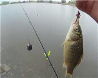 Клёвая рыбалка — Небольшая рыбалка 4 мая