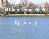 Рыбалка в Карасунских (Покровских) озерах Краснодара