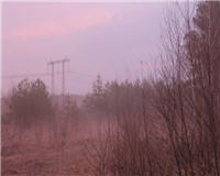 Балашиха и ближайшее околорубежье — Охота на вальдшнепа в Ногинском районе. Часть 3 - Всё будет дальше...