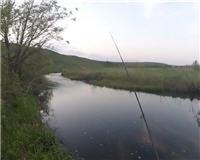 Балашиха и ближайшее околорубежье — Голавли реки Семенёк