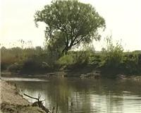 Рыбак рыбаку... — Ловля голавля в мае на нахлыст и спиннинг