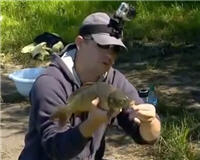 Рыбак рыбаку... — Рыбалка во Владыкино. Ловля карпа.